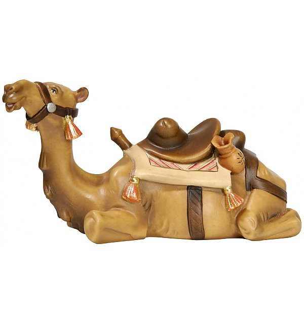 2281 - Camel lying COLOR