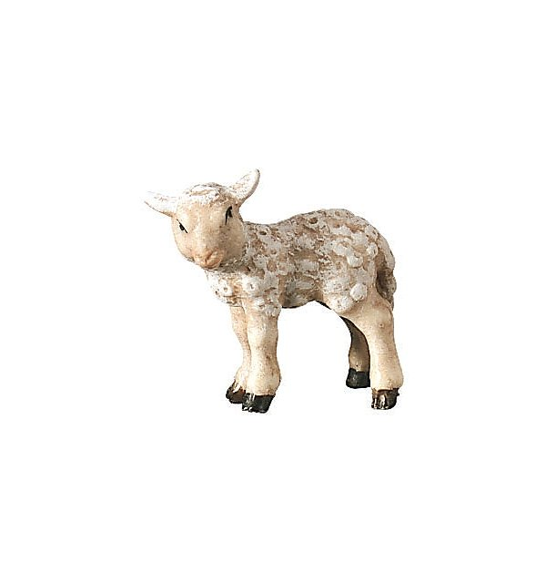 2500 - Lamb standing COLOR