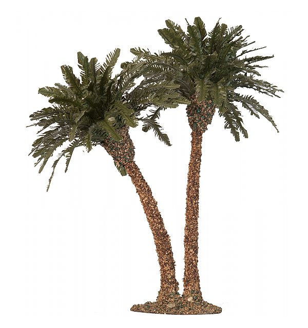 2791 - Palm tree, double