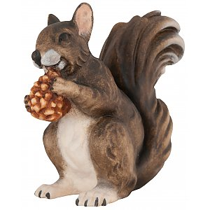 4333 - Squirrel